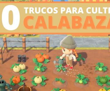 20 TRUCOS para CULTIVAR CALABAZAS en Animal Crossing New Horizons | CobayasGamer