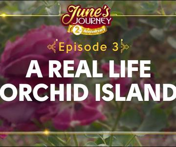 A REAL LIFE Orchid Island?! (Hidden Talents - Episode 3)