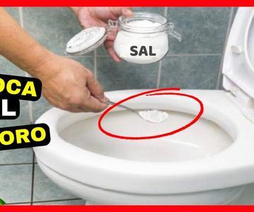 Coloca Sal en el Inodoro para liberar el Atasco